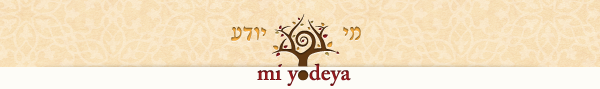 Mi Yodeya Weekly Newsletter