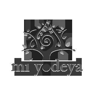 Mi Yodeya Meta